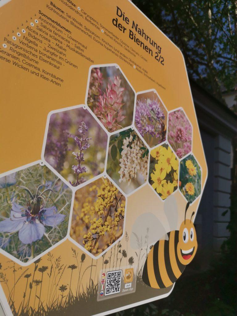 Bienen fliegen auf Villach