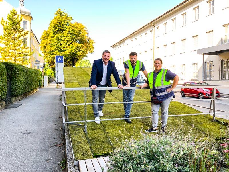 Villach testet Moosmatten zur Dachbegrünung