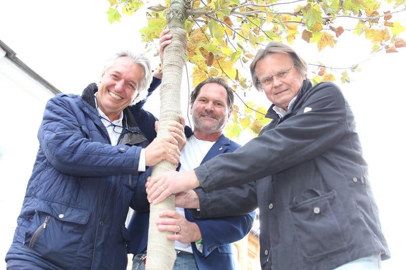 Großer Erfolg für Baumpaten-Aktion