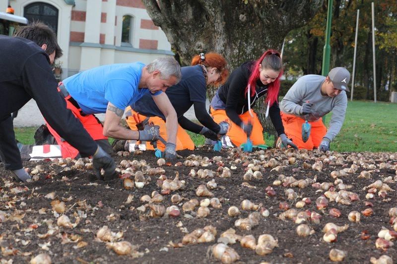 Stadtgarten-Teams bereiten schon den Frühling vor