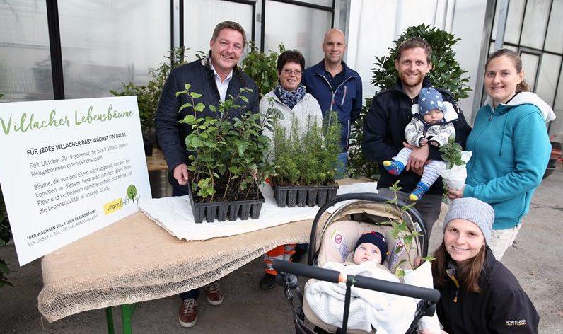 Villach wächst: Für jedes Neugeborene wird ein Baum gepflanzt