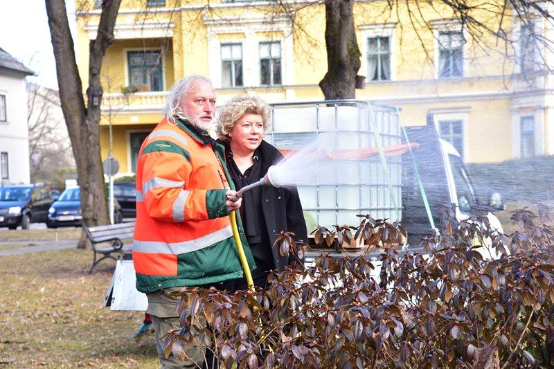 Viel zu trocken: Stadtgarten startet Pflanzenrettung