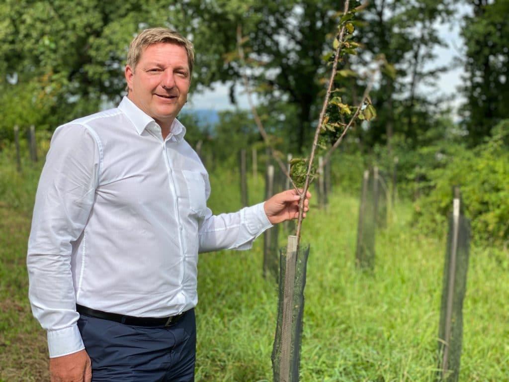Villachs Lebensbaum-Wald wächst und wächst
