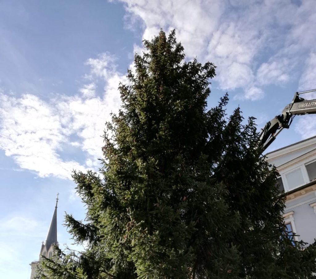 """""""Weihnachtsbaum ein Stück vertraute Normalität"""""""