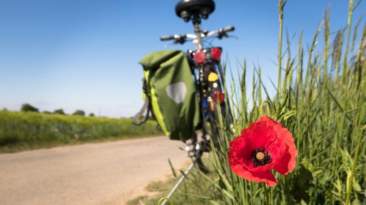 Die schönen Radstrecken rund um Villach